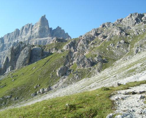 Vegan zu Fuß über die Alpen